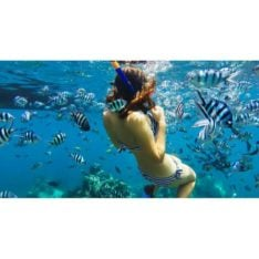 Gopro Blue Water Snorkle Filter Na. Gopro Cameras found in Generic Cameras & Generic Accessories. Code: AACDR-001