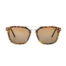 Liive Vision Shaz Polarised Tort. Liive Vision Sunglasses found in Womens Sunglasses & Womens Eyewear. Code: L0648A