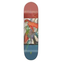 Girl Skateboards Girl Ecol Og Deck Mccra. Girl Skateboards Skateboard Decks found in Boardsports Skateboard Decks & Boardsports Skate. Code: 10054954