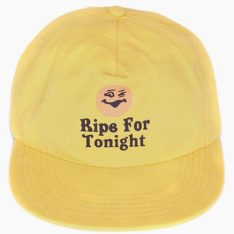 Critical Slide Society Ripe Cap Sun. Critical Slide Society Hats & Caps found in Mens Hats & Caps & Mens Headwear. Code: HW1894